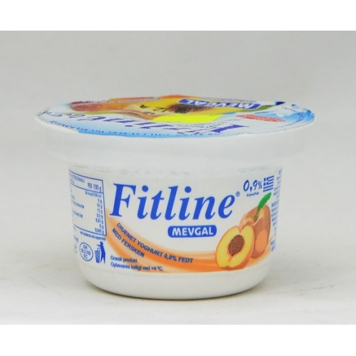 YOGURT FRUTTA FITLINE HOLYCON GR.150